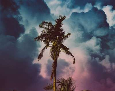 cyclone-ravaged-vanuatu-gets-help-from-yachtaid-global